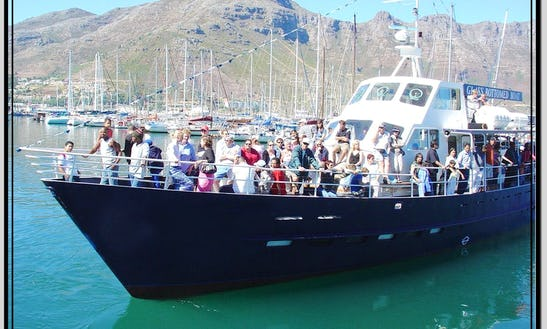 Charter On Glass Bottomed Passenger Boat From Cape Town