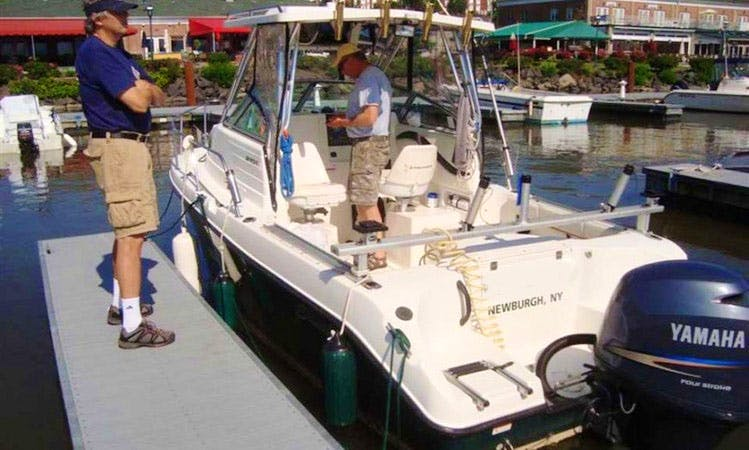 21' Seaswirl Striper Fishing Charter In Newburgh