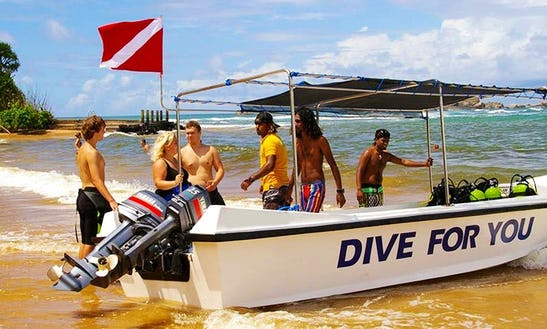 Boat Diving Trips In Aluthgama