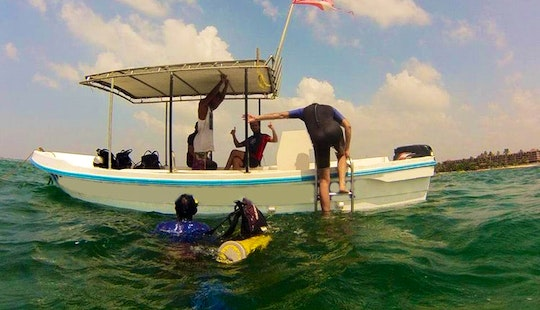 Diving Rental In Hikkaduwa