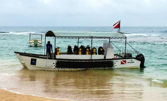 'poseidon' Boat Diving & Padi Courses In Hikkaduwa