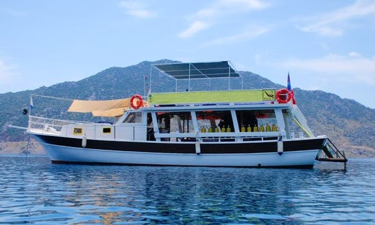 Enjoy Diving Tours & Lessons In Selimiye, Turkey