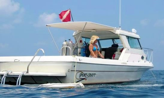 Scuba Diving Trips And Courses In Tarpon Springs