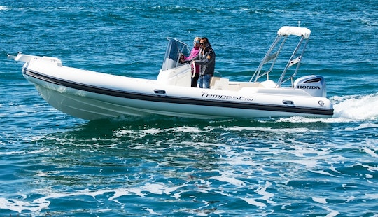 Capelli Tempest 700 + Honda 250 Rib For Rent In Zadar, Croatia