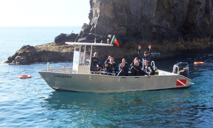 Diving Trips and Courses in Funchal, Madeira