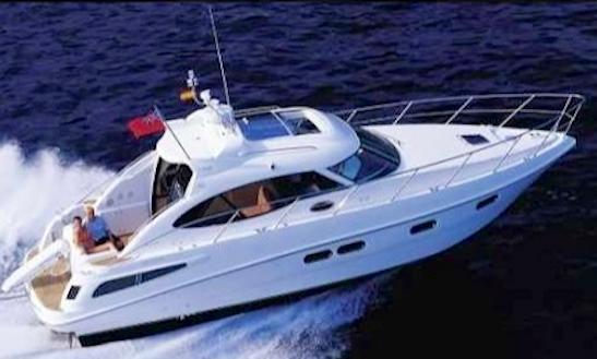 Charter 39' Sealine C - Johnny Ii Motor Yacht In Liscia Di Vacca, Italy