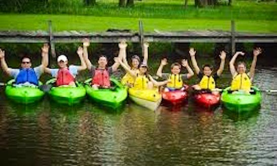 Eco Guided Kayak Tour In Finger Lakes