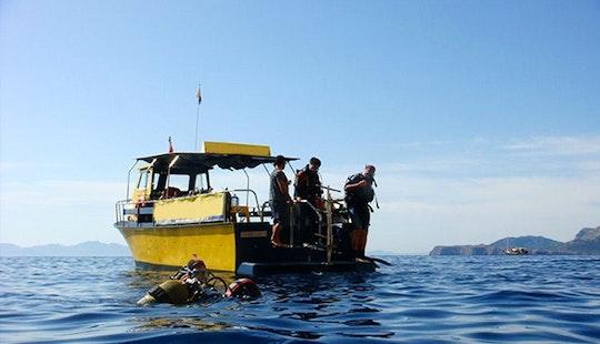 ''trawler Ii'' Rental In Pollença