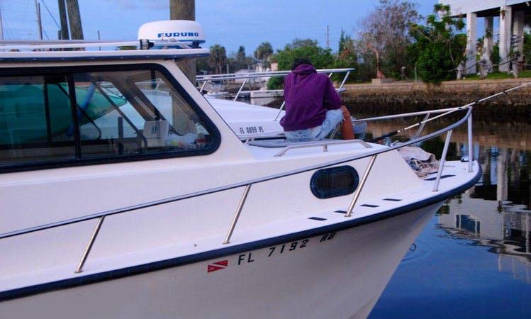 Pilot House Inboard Desiel rental in Port Richey or Hudson Area