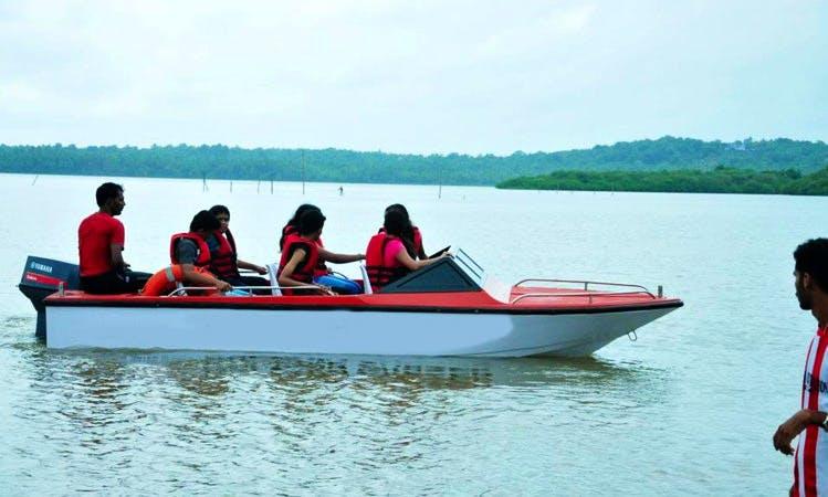 Enjoy Dolphin Tours in Kannur, Kerala