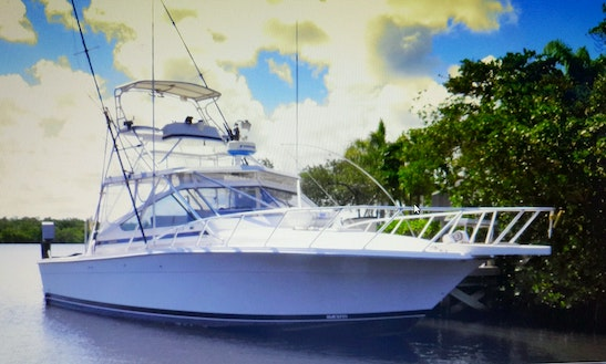 Sport Fisherman Fishing Charter In Islamorada