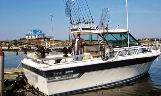 28' Baja Cruisers Sportfisherman Yacht In Pulaski