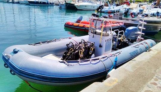 Enjoy Diving Courses In Calvi Corse, France