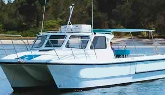 Diving Trips And Courses In Forster