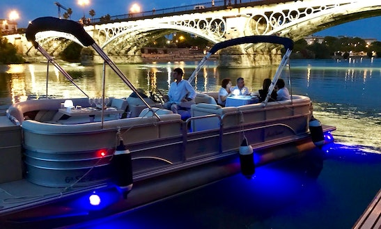 Enjoy Private Boat Trip On Pontoon In Sevilla, Spain