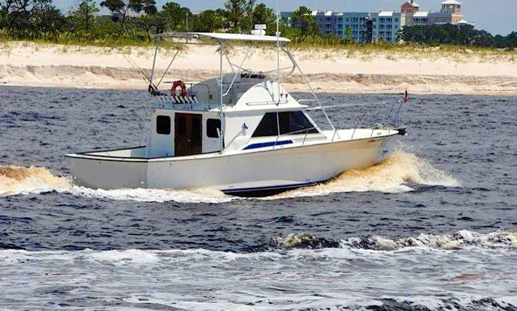 "41' Sport Fisherman ""Long Shot"" Fishing Charter in Panama City, Florida"