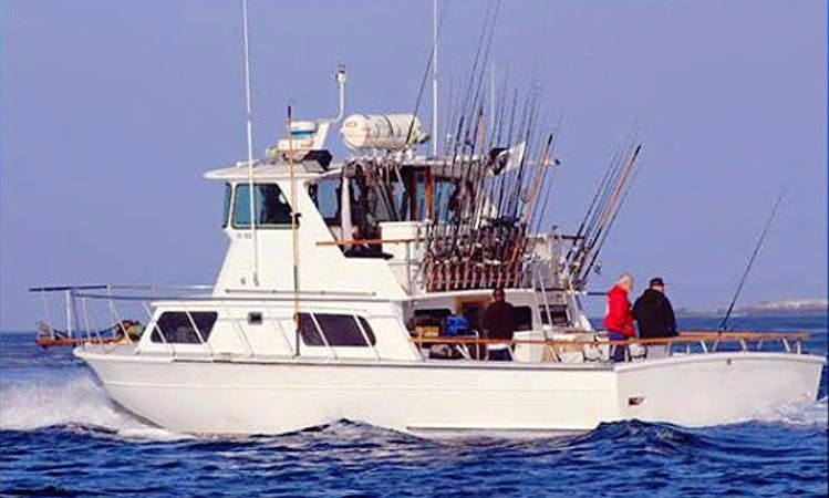 50' Sport Fishing Yacht Charter In Long Beach