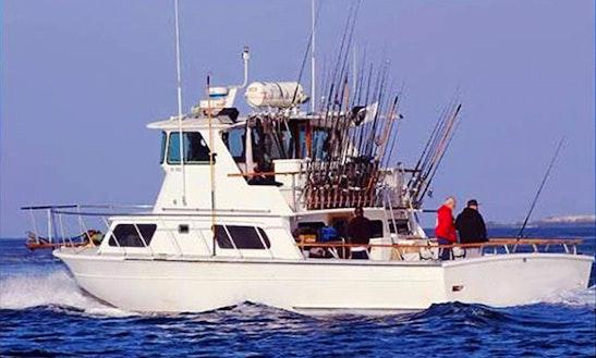 50' Sport Fishing Yacht Charter In Long Beach