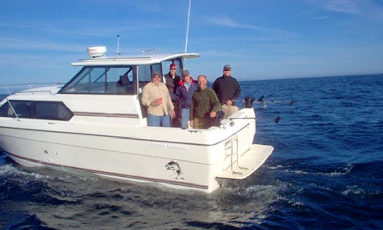 Charter 36' Bayliner Fishing Yacht In Ucluelet