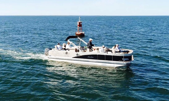 Pontoon Boat Fishing Charters, Tours And Casual Cruises On St. Joe Bay And The Historic Apalachicola River