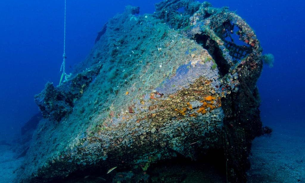 Diving Trip in Orosei, Italy with Professional Guides
