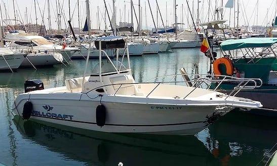 Rent Wellcraft Marine W730 Powerboat In Palma, Spain