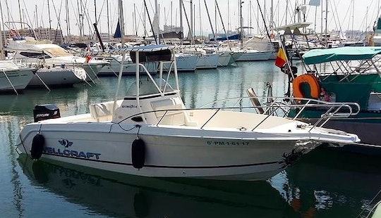 Rent Wellcraft Marine W730 Powerboat In Palma, Spain