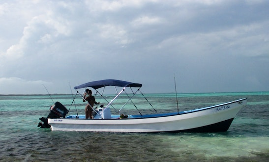 Barrier Reef Snorkel And Sand Bar Tour From Ladyville Or Belize City