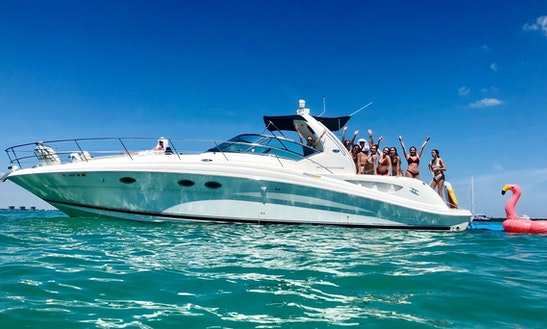 Sky 45' Sea Ray Yacht For 12 Guests - Best Value!