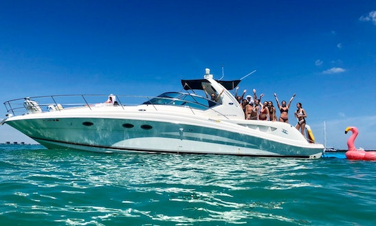 Sky 45' Sea Ray Yacht For 13 Guests - Best Value!
