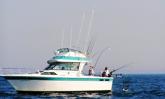 Sport Fisherman Fishing Charter In Manitowoc, Wisconsin