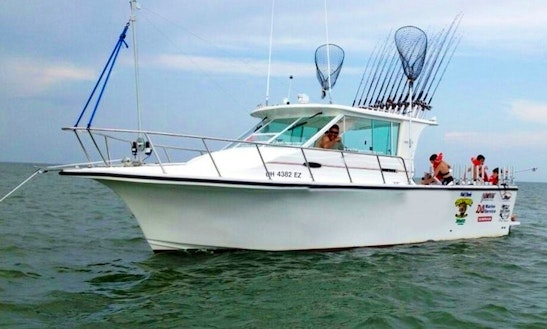 Db Sport Fishing Charters In Lake Erie