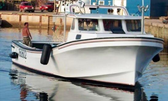 45' Miramichi Magna Marine Fiberglass Cuddy Cabin Fishing Charter In Souris
