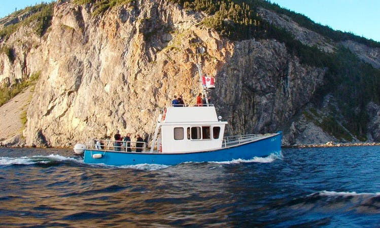 Bay Island Cruises & Ocean Fishing in Cox's Cove