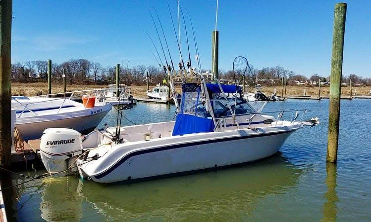 "Fishing Charter On 25ft ""Fluke n' Around"" Wellcraft boat in Union Beach, New Jersey"