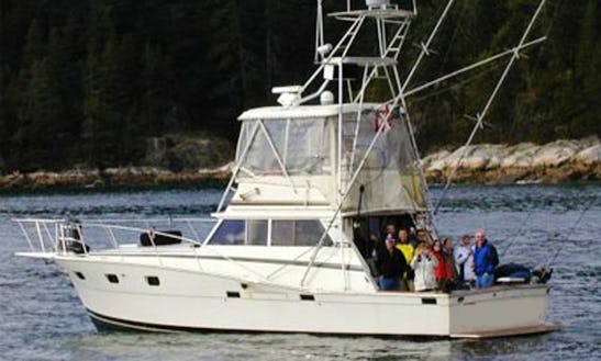 41' Sport Fisherman Fishing Charter In Vancouver, Canada