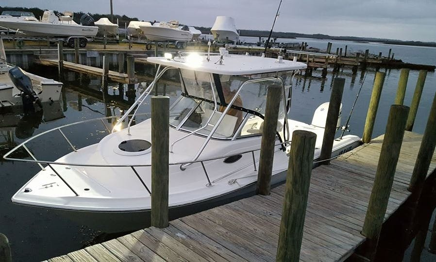 """Enjoy Fishing On 23ft """"At Ease"""" Sea fox Yacht In Sneads Ferry, North Carolina"""