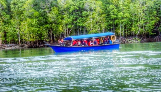 See The Bat Caves By Canal Boat In Langkawi, Malaysia