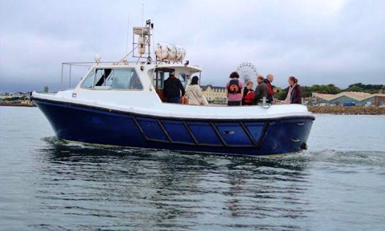 1 Hour Harbour Tour on Lochin 333 Harbour Pilot Boat in Galway