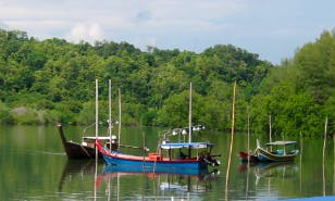 1-4 Hour a Canal Boat Tours in Langkawi, Malaysia
