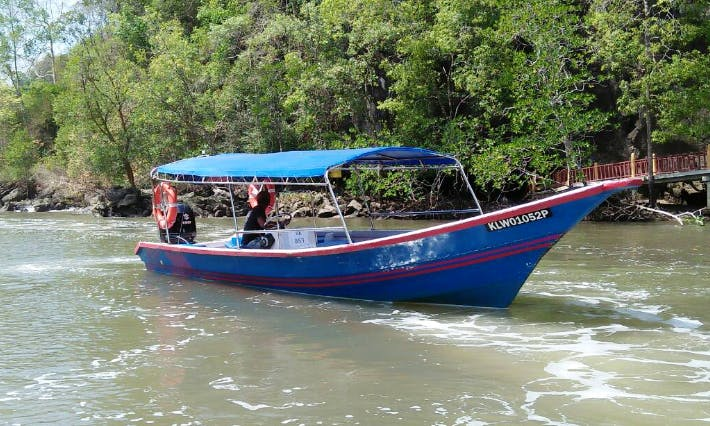 Take a River Cruise Through Langkawi's Caves!