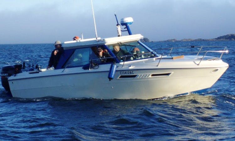 24' Cuddy Cabin Fishing Charter in Ucluelet, Canada
