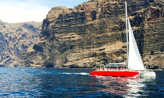 Catamaran Excursion In Adeje