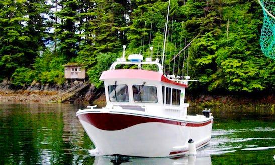 40' Cuddy Cabin Charter In Sitka, Alaska