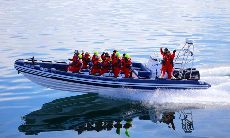 Exclusive Sea Adventures Tours on Parker Baltic 900 RIB in