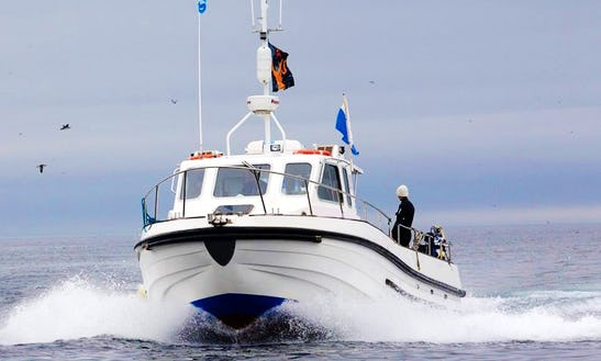 Mv. Shore Diving Trips In Saint Abbs