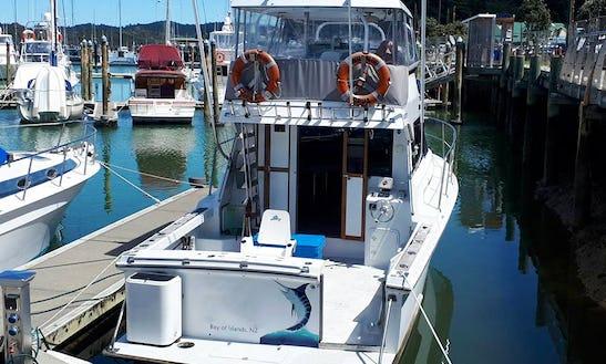 40' Sportfishing Charter In Bay Of Islands, New Zealand