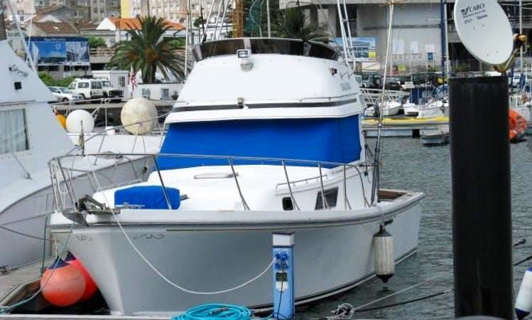 BRENDEN 33 Sport Fisherman Fishing Trips in Acores, Portugal