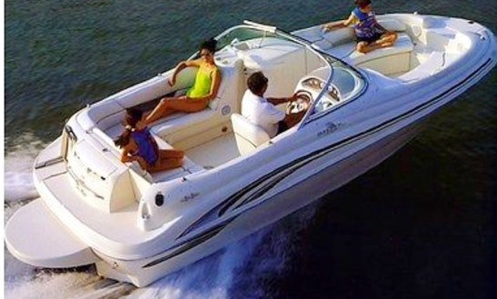 Sea-ray Sundeck 21 Ft For Charter Rent