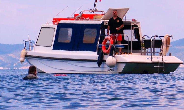 Diving Trips in Thasos, Greece